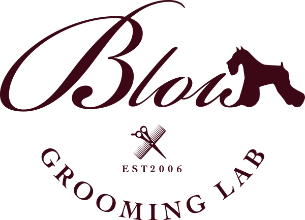 blois-logo